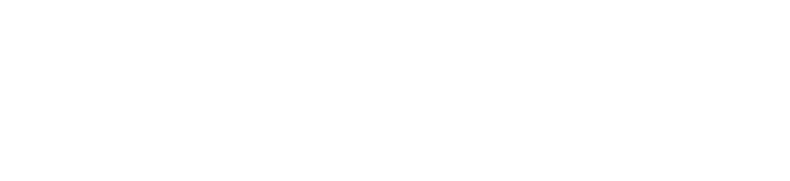 Web Design, Development, Maintenance & Support | Tumbleweed Creative Logo